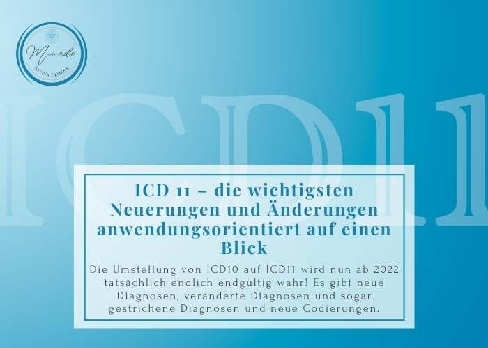 Workshop Bild ICDL 11
